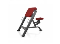 BICEPS BENCH MARBO MP-L203, PROFESSIONAL